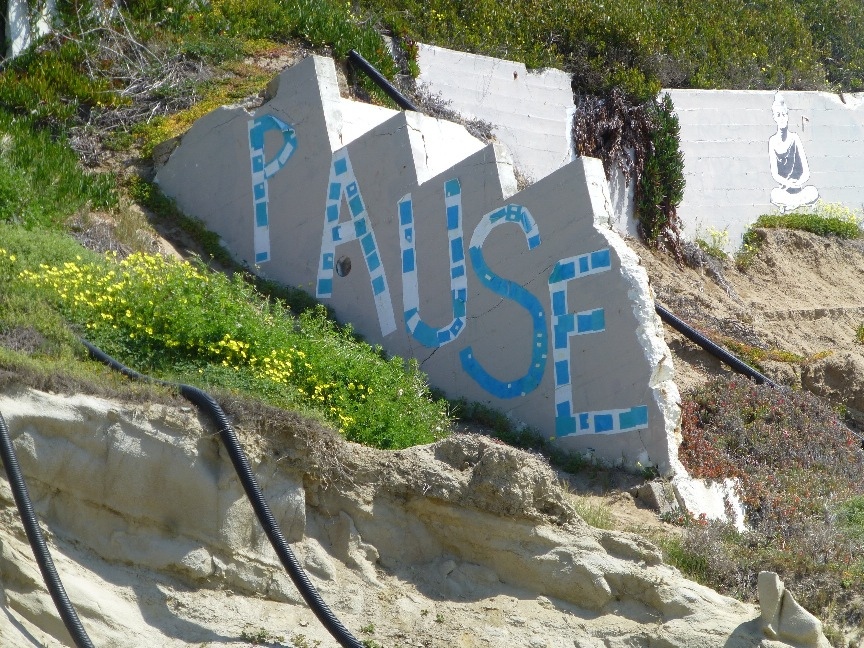 Pause on the rocks